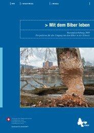 Mit dem Biber leben - Schweizer Informationssystem Biodiversität
