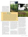 010SM1 lente kies bewust.pdf - t Schrijvertje - Page 2