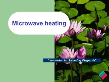 Microwave Heating Little Bit Of Theory