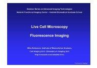 Live cell imaging - Biomedicum Imaging Unit (BIU) - Helsinki.fi
