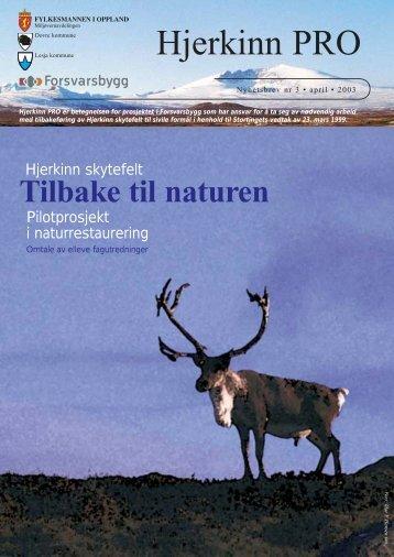 Nyhetsbrev Hjerkinn april 2003 - Forsvarsbygg