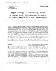 In Vitro Assessment of the Differentiation Potential of Bone Marrow ...