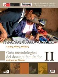 Guía metodológica del docente facilitador - Ministerio de Educación