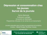 Dépression et consommation chez les jeunes - Institut universitaire ...