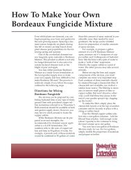IS1829 How To Make Your Own Bordeaux Fungicide Mixture