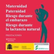 Maternidad Paternidad Riesgo durante el ... - Seguridad Social