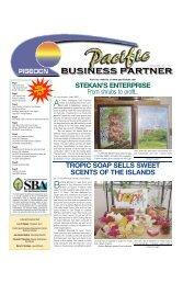 February 2007 - Pacific Islands Small Business Development Center ...