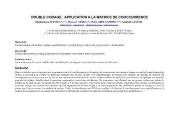 Double codage des niveaux de gris : Application au ... - IRIT