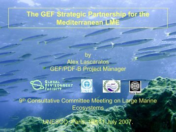 The GEF Strategic Partnership for the Mediterranean LME