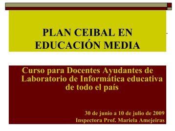 Los docentes de Educación Media: dominio y uso de herramientas ...