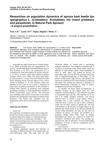 Researches on population dynamics of spruce bark beetle Ips ...
