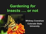 Gardening for Bugs - Utah Pests
