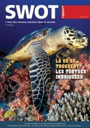 Tortue imbriquée - The State of the World's Sea Turtles