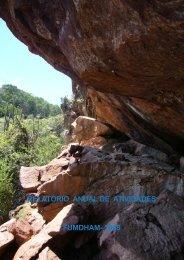 clique aqui e vej ao relatório anual em 2008 sobre a preservação