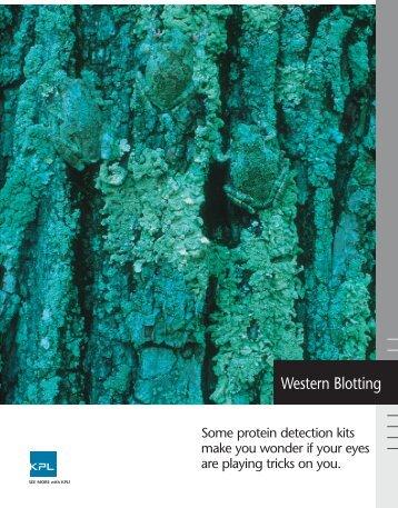 Western Blotting Brochure - KPL
