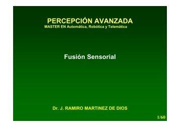 Fusión Sensorial