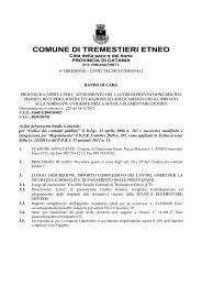 Bando di gara - Comune di Tremestieri Etneo