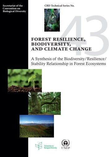 Forest Resilience, Biodiversity, and Climate Change