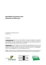 Download het rapport over de boomkikker in Zuid Twente