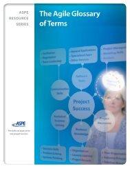 The Agile Glossary of Terms - ASPE