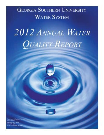 2012 Water Quality Report - services - Georgia Southern University