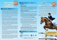 programas - Colegio Profesional de Fisioterapeutas de la ...