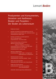 Boden - Bayerisches Staatsministerium für Umwelt und Gesundheit