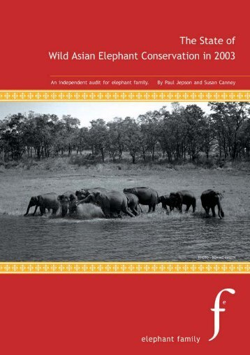 Elephant Report.qxd - School of Geography and the Environment