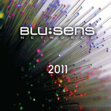 innovation: r&d - Blusensnetworks