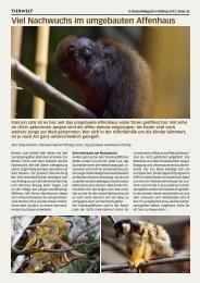 Viel Nachwuchs im umgebauten Affenhaus - Birseck Magazin