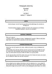 Pedagogisk planering Rymden Vt 2013 vecka 2 – vecka 9