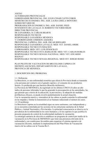 ANEXO AUTORIDADES PROVINCIALES GOBERNADOR ... - Senasa