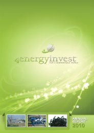 Annual report 2010 - 4Energy Invest