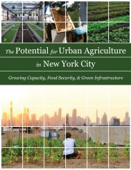 urban_agriculture_nyc