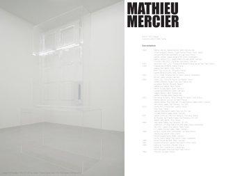 Mathieu Mercier - super window project