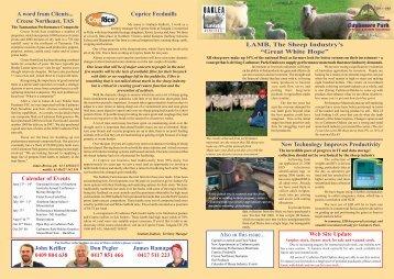 LAMB, The Sheep Industry's - Coopworth Society of Australia
