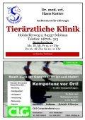 SV Schönau DJK-TSV Dietfurt - Seite 6