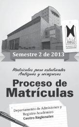 Proceso de matrículas semestre II de 2013