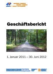 Geschäftsbericht 1. Januar 2011 – 30. Juni 2012 (PDF) - Palliative ch