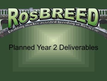Planned Year 2 Deliverables - RosBREED