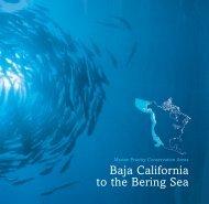 B2B PCAs - Marine Conservation Institute