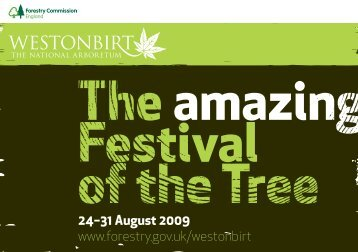 Festival of the Tree - Classic Hand Tools