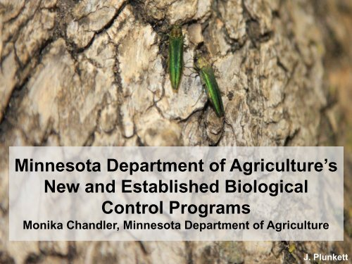 Minnesota Department of Agriculture's New and Established ...