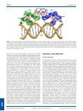 Structural and thermodynamic consequences of the replacement of ... - Page 2