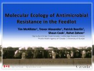 Studies of Antimicrobial Resistance: Tim McAllister
