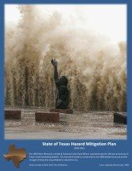 State of Texas Hazard Mitigation Plan - Texas Department of Public ...