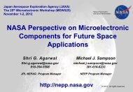 NASA Perspective on Microelectronic Components for Future Space ...