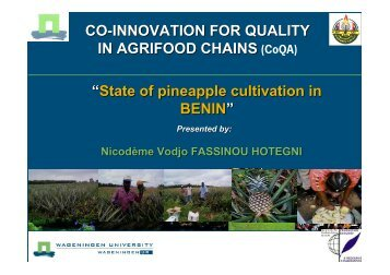 constraints of pineapple production - CoQA