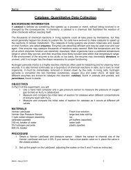Catalase: Quantitative Data Collection - nnhsbergbio