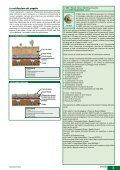 TETTI VERDI - Index S.p.A. - Page 3
